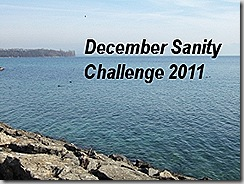 december sanity challenge badge final
