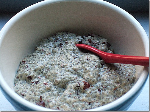 minty high-protein chia pudding with cacao nibs (5)