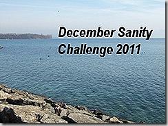 december sanity challenge badge final