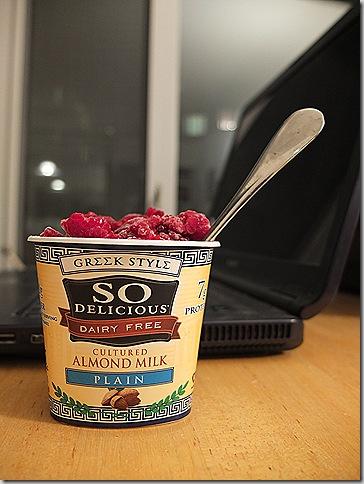 So Delicious Greek Yogurt (6)